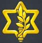 IDF ICONO