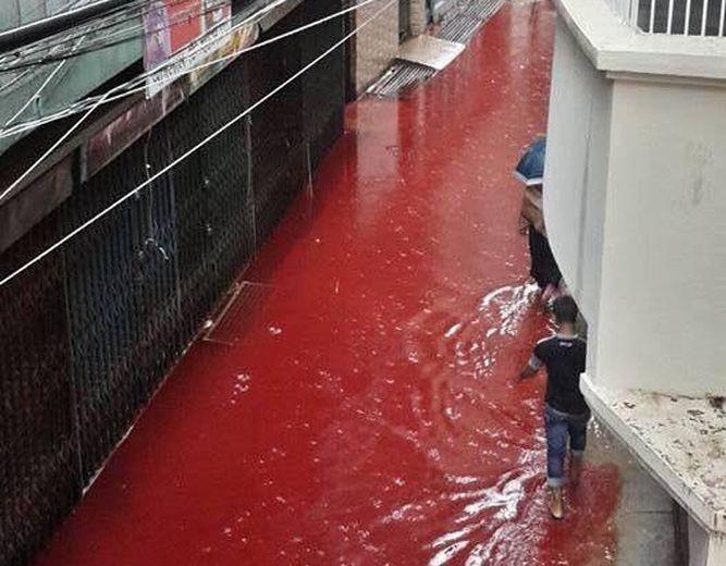 calles-llenaron-agua-sangre_953614919_12459304_667x520
