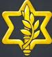 idf-icono-2