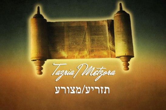 tazria-metzora-torah-reading