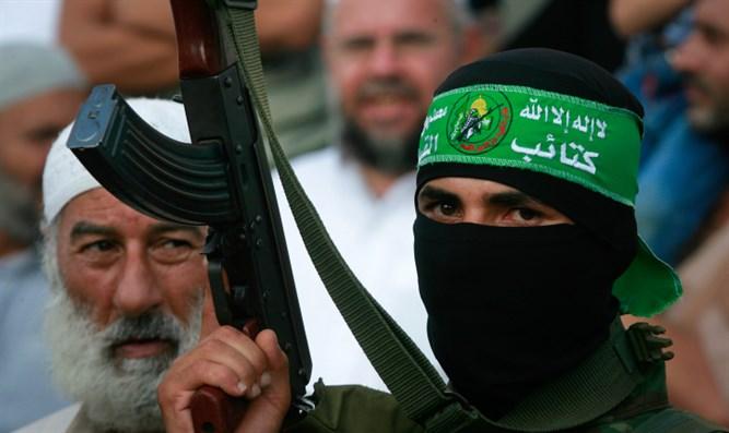 Hamas terrorista