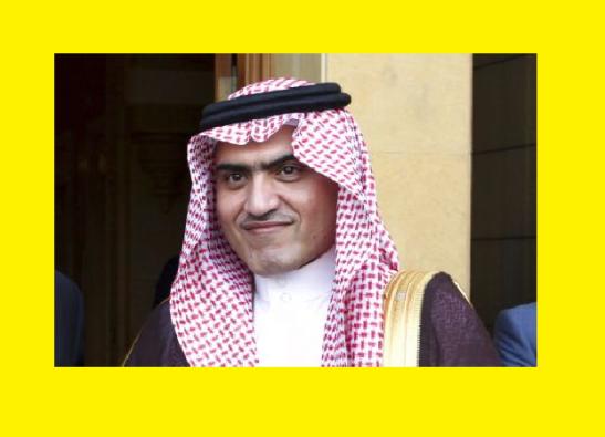 ministro saudi para asuntos del golfo